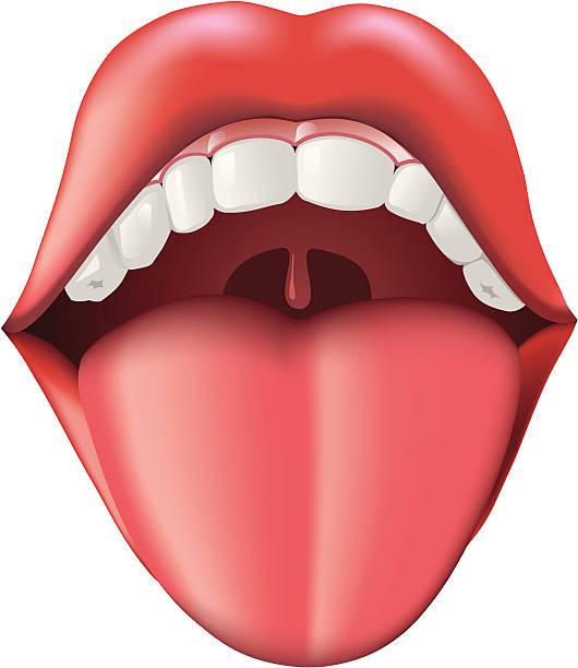 tongue clipart 4 - Tongue Clipart