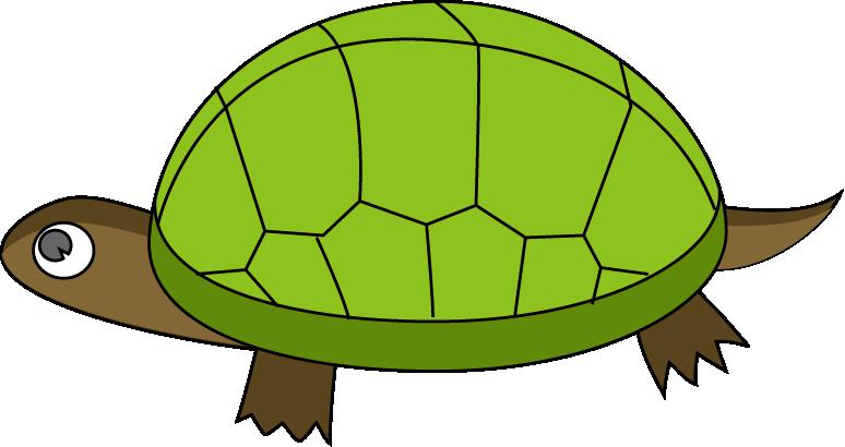 Tortoise Clipart-tortoise clipart-10
