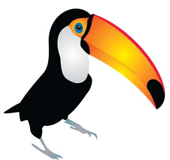 Toucan Clipart Clipart Best