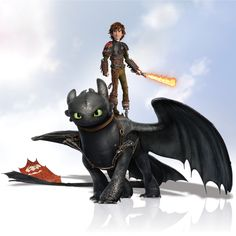 Train your dragon, How to .
