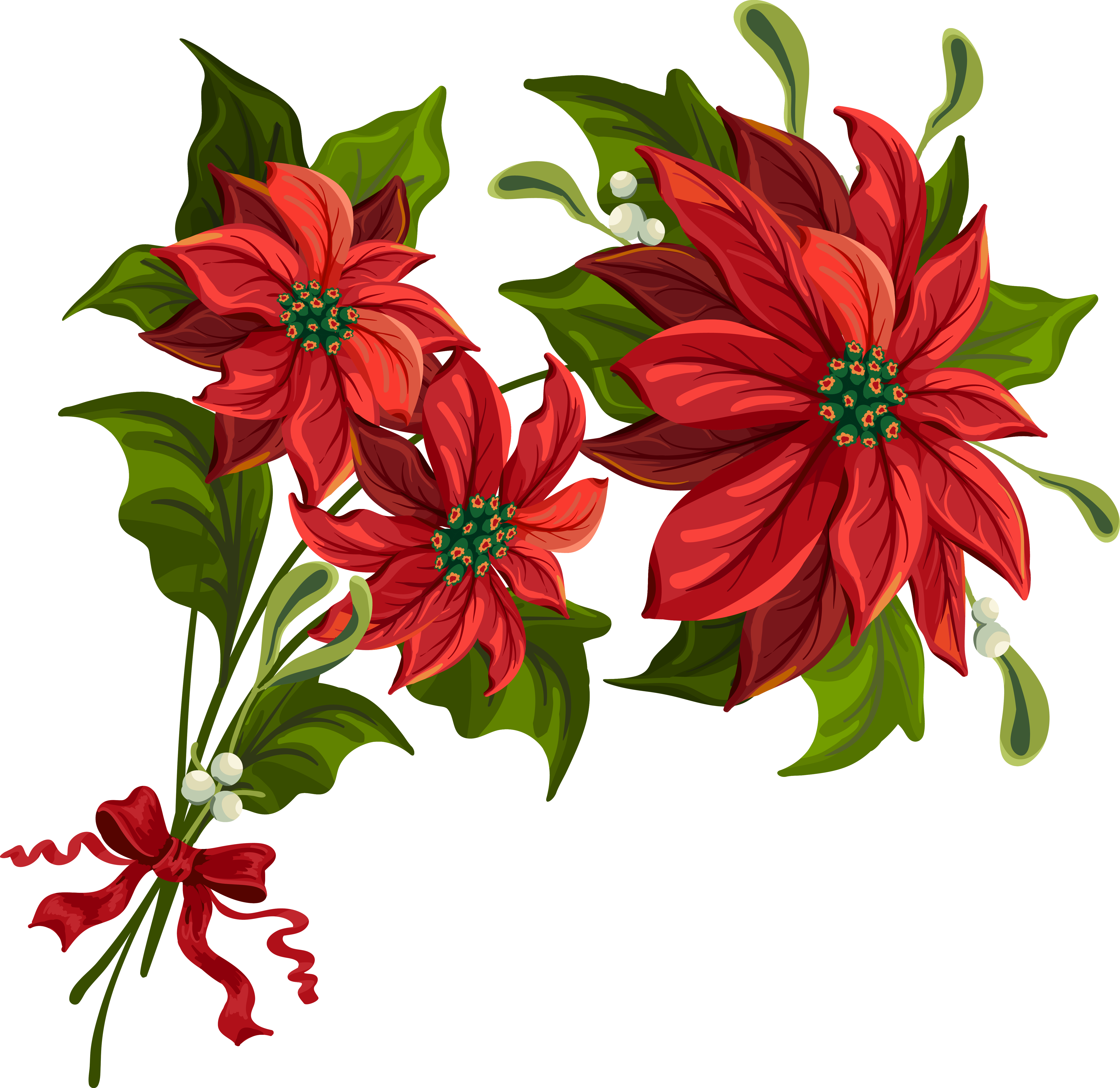 Transparent Poinsettia Clipart