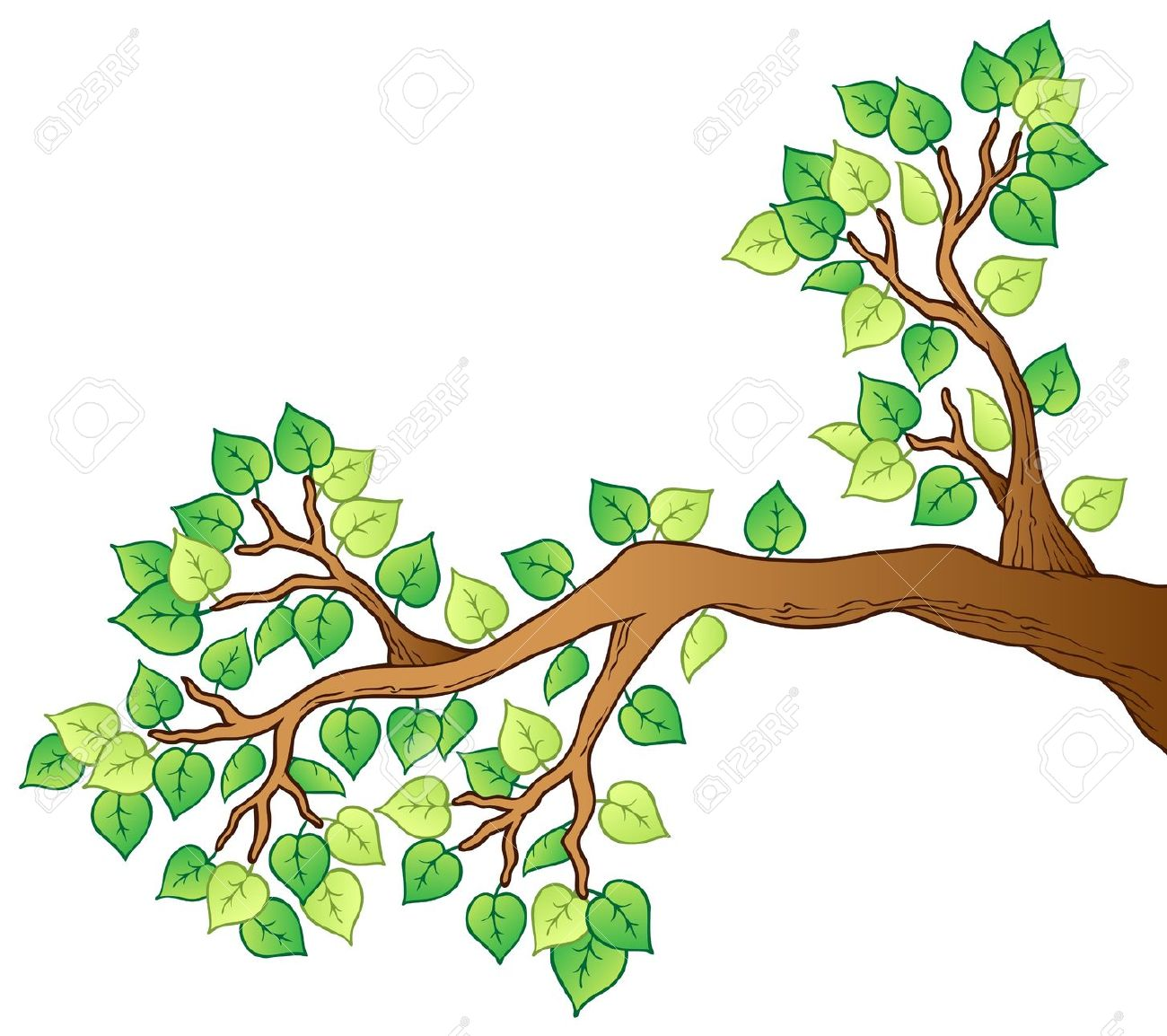 Tree Branch: Cartoon Tree .-tree branch: Cartoon tree .-9