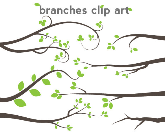 Tree Branch Clip Art - Branch ... 00457d-tree branch clip art - branch ... 00457d46bffb3b795ae33bb7f28d62 .-10