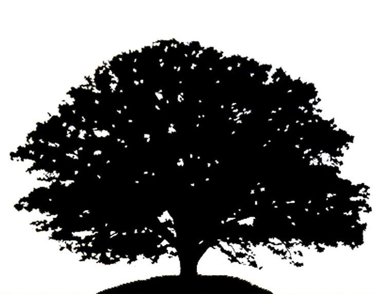 Tree clip art oak tree clip .