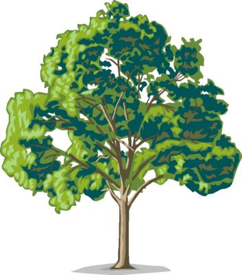 Tree Clip Art Page Three Free Clip Art I-Tree Clip Art Page Three Free Clip Art Images Free Graphics-13