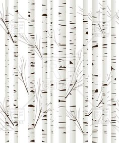 Tree Clipart. Birch wood trees .