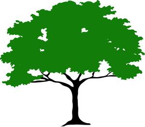 ... Tree Clipart - Free Clipart Images .-... Tree Clipart - Free Clipart Images ...-15