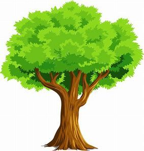 Image result for tree Clipart-Image result for tree Clipart-1