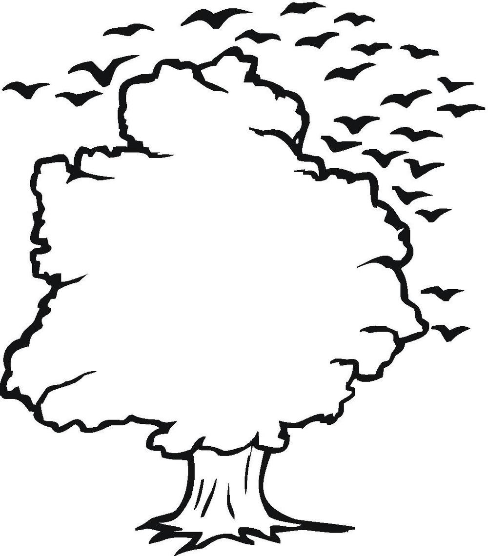... Tree clipart outlines ...-... Tree clipart outlines ...-12