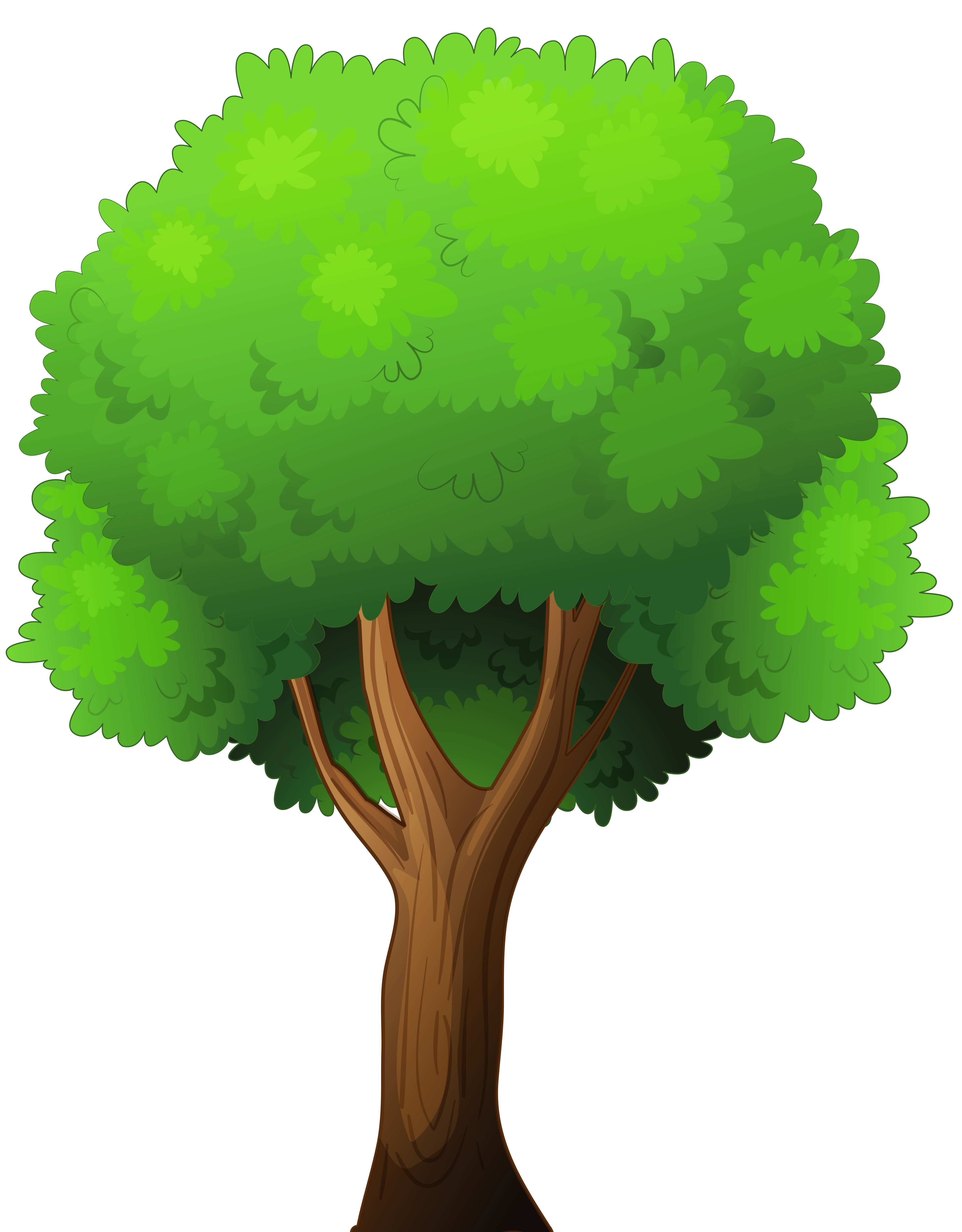 Tree Clipart Png-tree clipart png-14