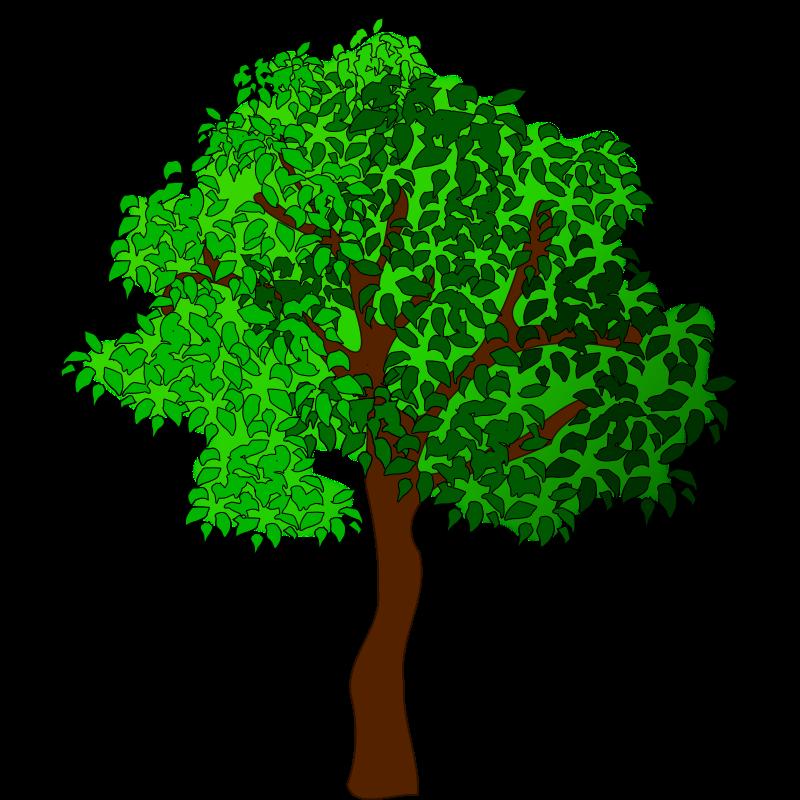 Tree clipart, Trees vector