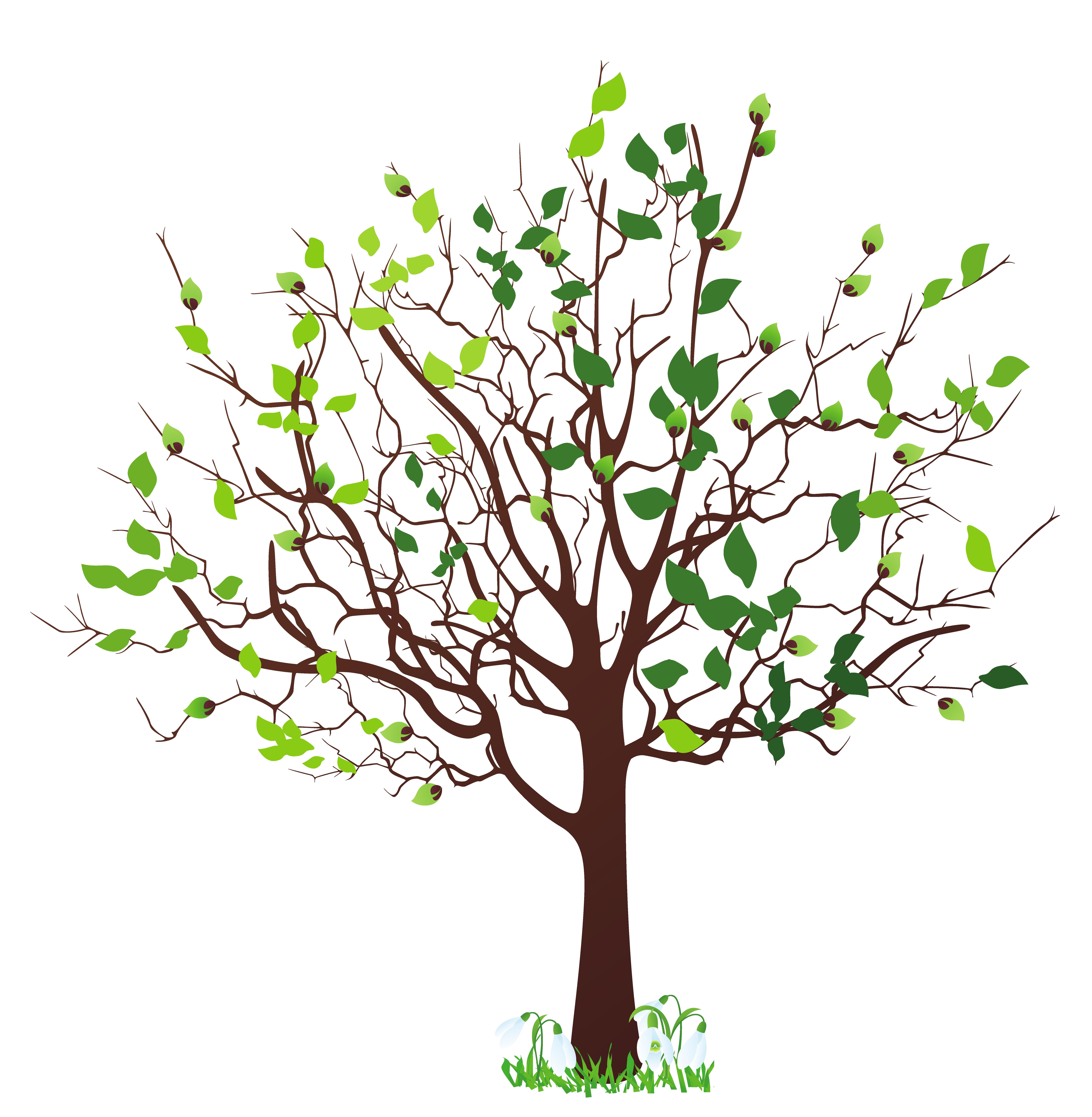 Tree Free Clipart Tree Free .-Tree Free Clipart Tree Free .-16