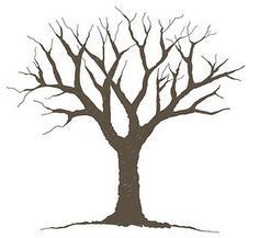 tree without leaves silhouette .