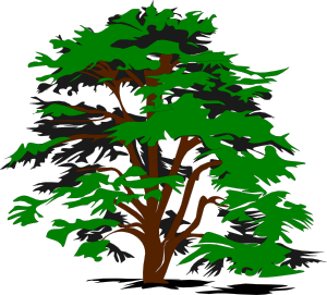 Trees Simple Tree Clip Art At Clker Vect-Trees simple tree clip art at clker vector clip art-15