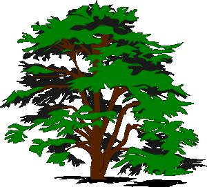Cartoon green tree clipart we