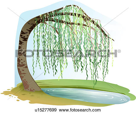 trees, tree, plants, puddle, willow, tree, plant. ValueClips Clip Art