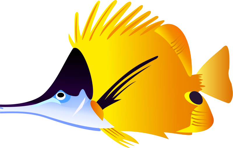 Tropical Fish Clip Art Clipart Panda Free Clipart Images