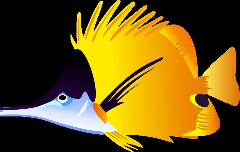 Tropical Fish Clip Art Clipart Panda Fre-Tropical Fish Clip Art Clipart Panda Free Clipart Images-12
