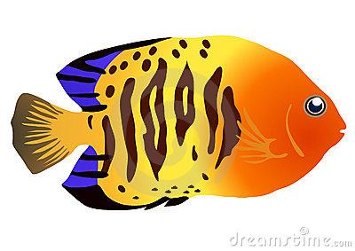 Tropical Fish Clip Art-tropical fish clip art-14