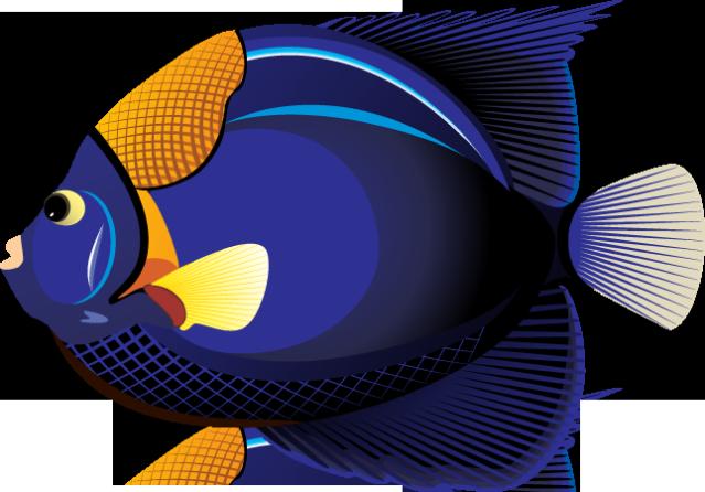 Tropical Fish Clipart-Tropical Fish Clipart-17