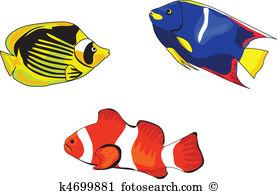 Tropical Fish-Tropical Fish-17