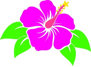Tropical Flower Clipart Image Pink Hibiscus Tropical Flower