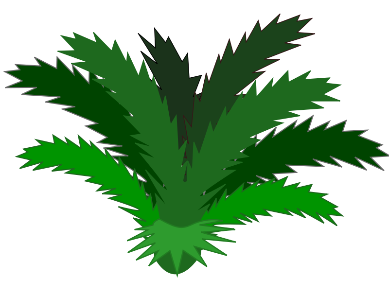 Tropical Palm Leaf Clip Art You Can Use This Clip Art Of