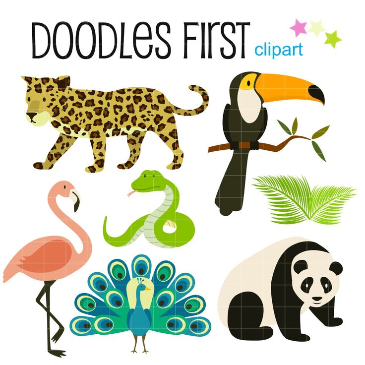 Tropical Rainforest Animals Digital Clip Art for Scrapbooking Card Making Cupcake Toppers Paper Crafts by DoodlesFirst