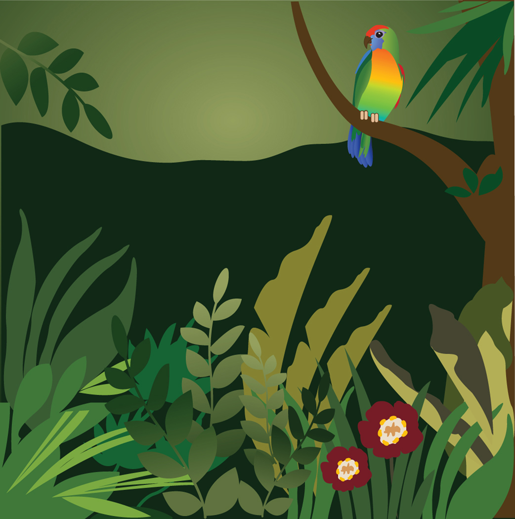 Tropical Rainforest Clip Art-Tropical Rainforest Clip Art-13
