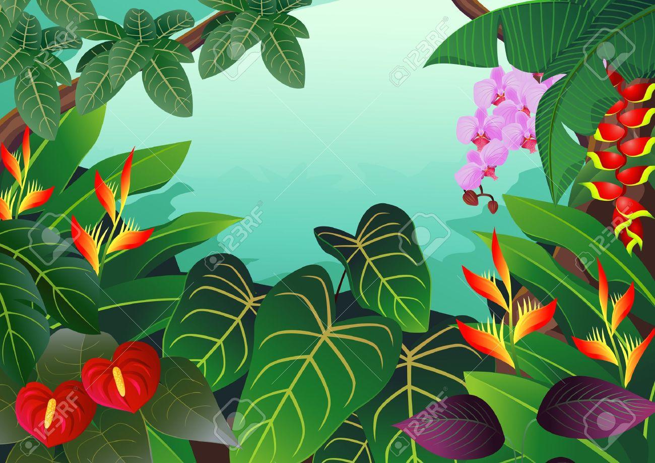 Tropical Rainforest Clip Art