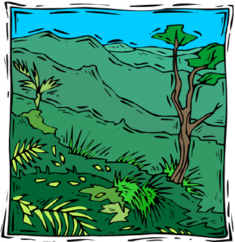 Tropical Rainforest Clipart 060711 Vector Clip Art Free Clipart