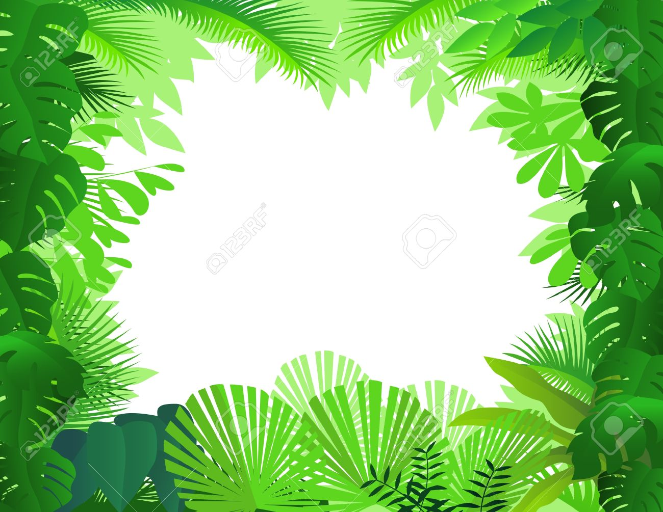 Tropical Rainforest Stock .