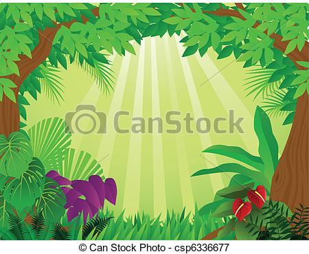 Tropical rainforest .