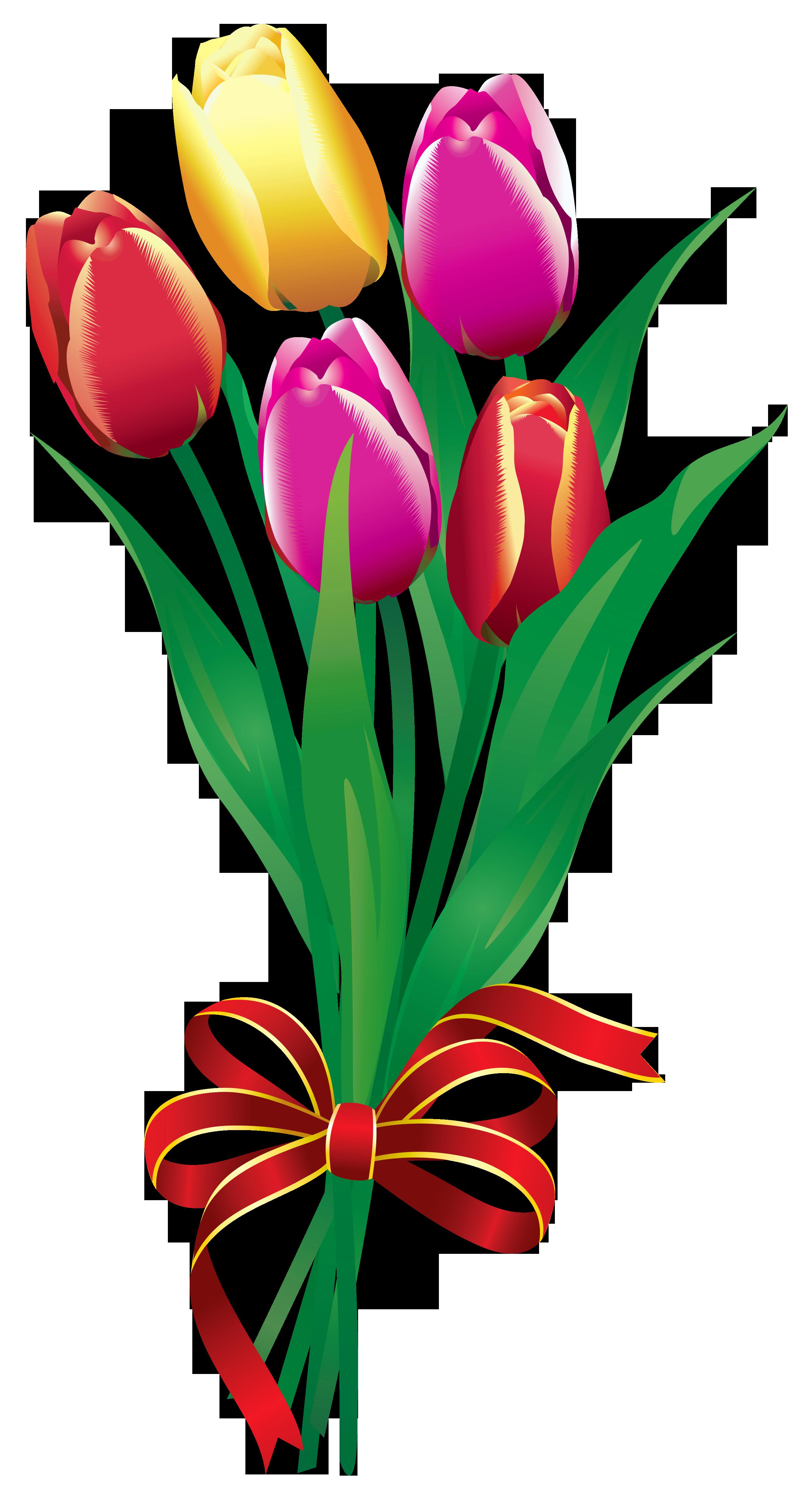 Tulip Bouquet Clipart