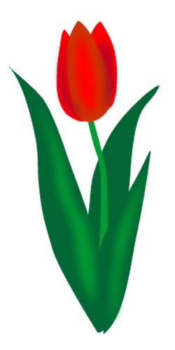 Tulip Clip Art-Tulip Clip Art-9