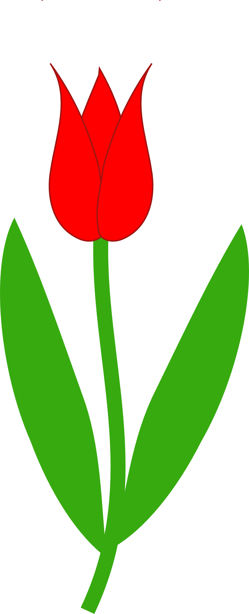 Tulip Clipart Red Tulip 999px Png 86 K