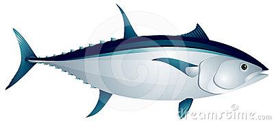 tuna clipart