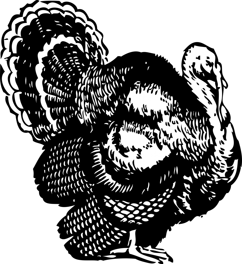 Turkey Clipart Black And White-Turkey Clipart Black And White-17