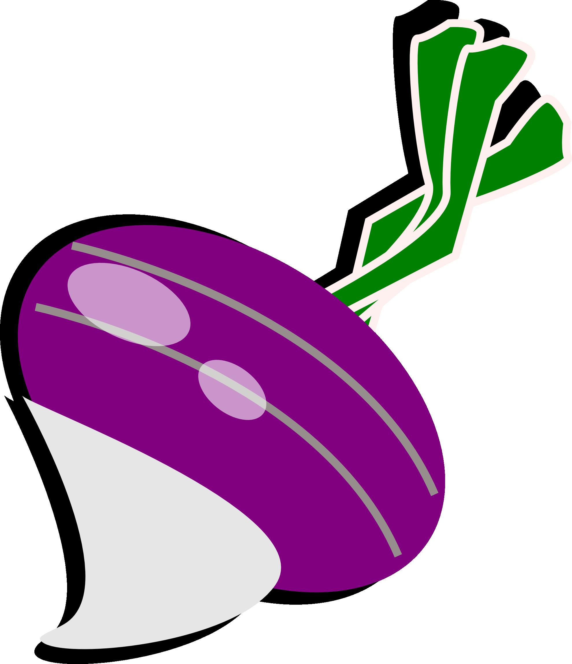 Turnip Clipart-turnip clipart-1