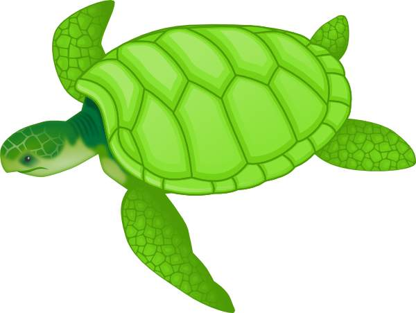 Turtle Clip Art 3-Turtle clip art 3-9