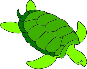 Turtle Clip Art Images Sea Turtle Stock Photos Clipart Sea Turtle