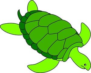 Turtle Clip Art Images Sea Turtle Stock Photos Clipart Sea Turtle