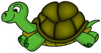 Turtle Clip Art-Turtle Clip Art-3