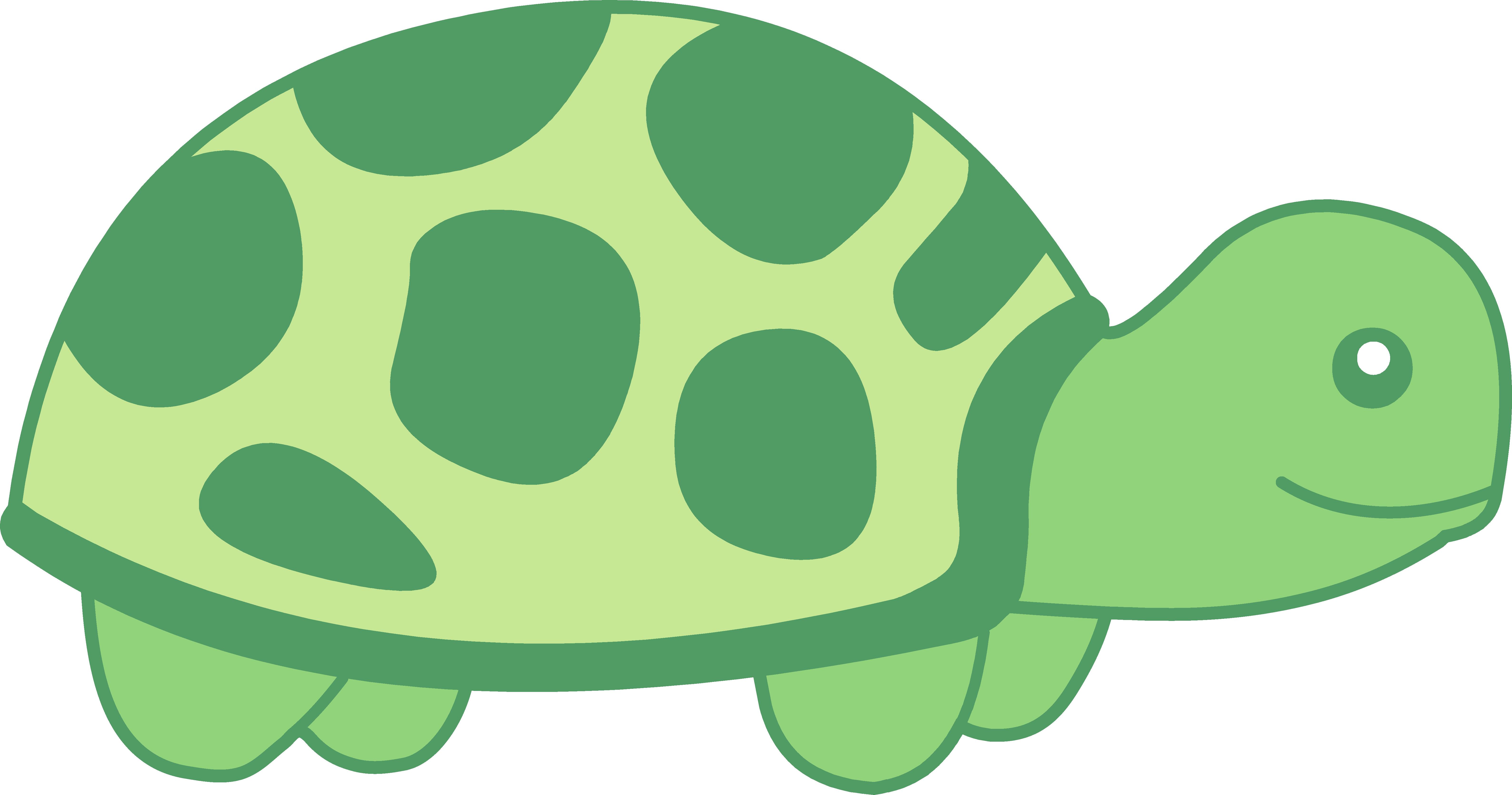Turtle Clip Art-Turtle Clip Art-7