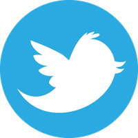 Social media blue bird vector