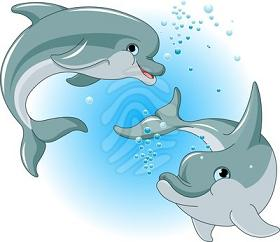 Two Happy Dolphins-two happy dolphins-19