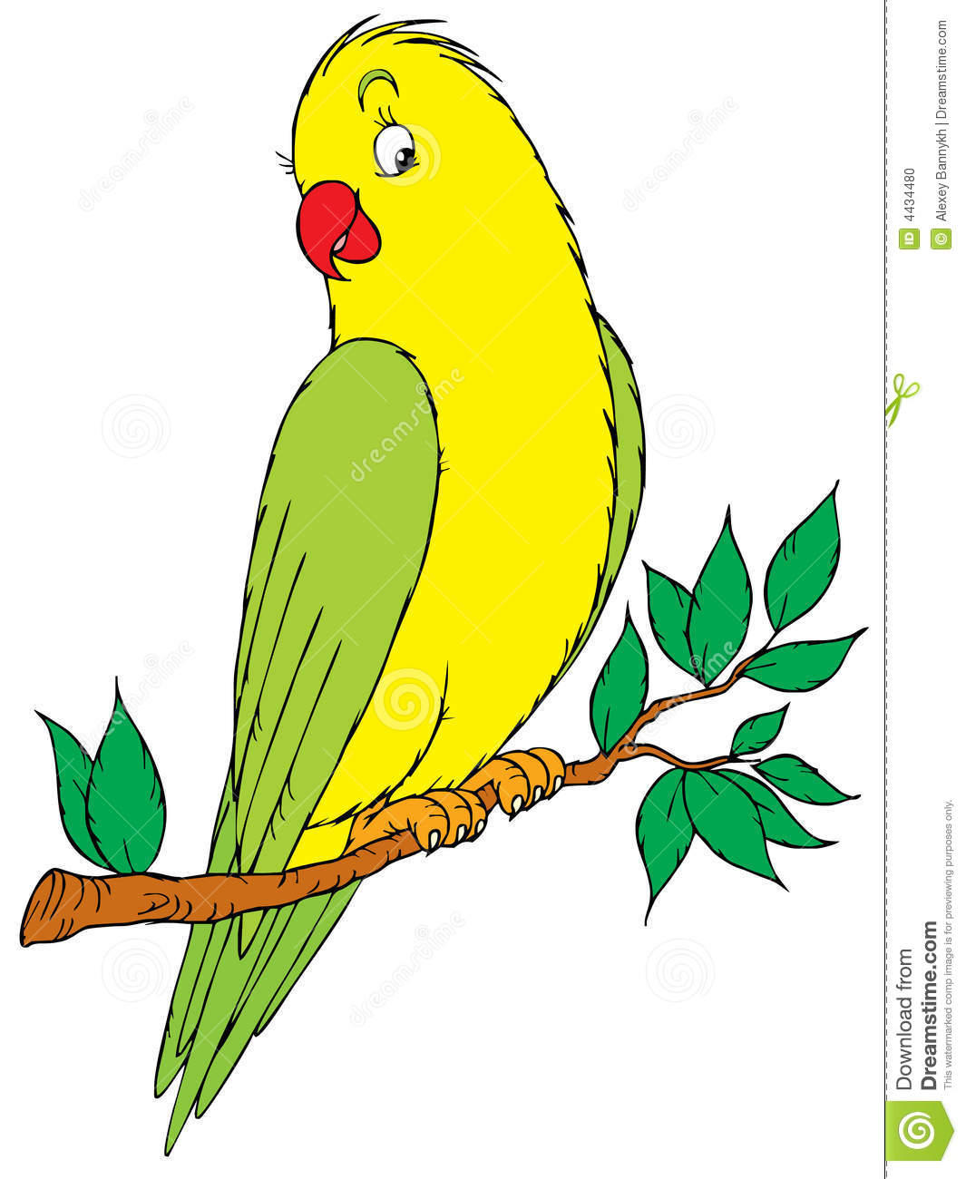 Two Parakeets Clipart-Two Parakeets Clipart-18