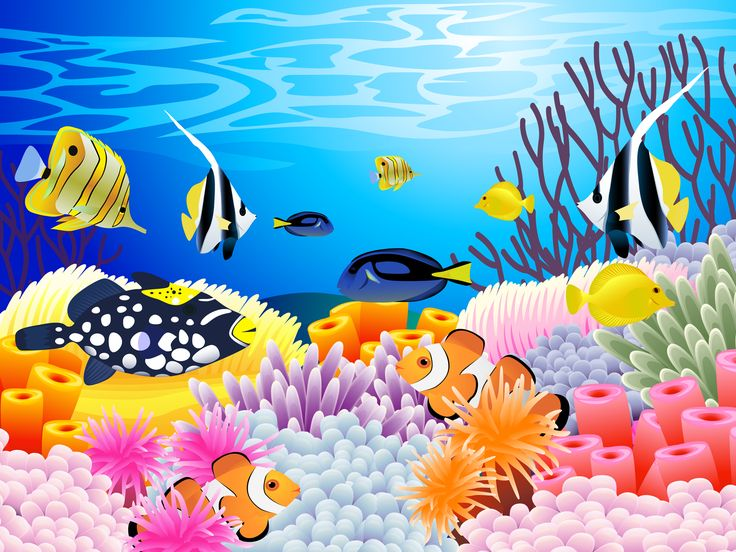 Undersea Picture Of Colorful Sealife With Some Coral Ocean