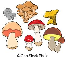 ... Various Fungi Collection - Isolated -... Various fungi collection - isolated illustration.-17