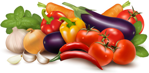 various vegetable vector art background